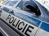 Policie - ilustra�n� foto.
