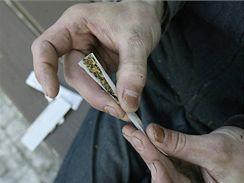 Marihuana - ilustrační foto.