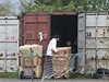 Vietnamsk� tr�nice (ilustra�n� foto).