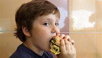 Dít� s hamburgerem (ilustra�ní foto) | na serveru Lidovky.cz | aktu�ln� zpr�vy
