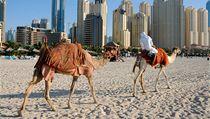Turisty stále více lákají nákupy v Dubaji. | na serveru Lidovky.cz | aktu�ln� zpr�vy