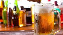 P�i vysokých teplotách pijte nealkoholické pivo. | na serveru Lidovky.cz | aktu�ln� zpr�vy