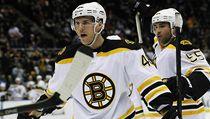 �eský hokejista Bostonu Bruins David Krej�í | na serveru Lidovky.cz | aktu�ln� zpr�vy