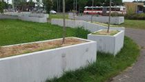 Tráv� zaseté v betonových truhlících v Praze na Smíchov� se o�ividn� neda�í... | na serveru Lidovky.cz | aktu�ln� zpr�vy
