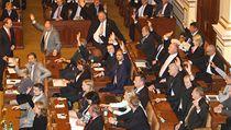 Poslanci hlasují o rozpu�t�ní Sn�movny. | na serveru Lidovky.cz | aktu�ln� zpr�vy