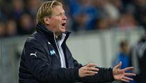 Na�tvaný trenér Hoffenheimu Markus Gisdol | na serveru Lidovky.cz | aktu�ln� zpr�vy