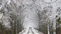 O letošních Vánocích by mělo sněžit jen minimálně