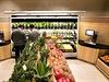 Bylinky, zelenina, ovoce. Vše čerstvé a pečlivě vyrovnané. Rozhodně si vyberete.
