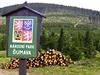 Zasahování lidí do lesních ekosystém� v Národním parku �umava skon�í, a� jejich vývoj bude odpovídat dynamice p�írodního lesa s pln� fungujícími spontánními autoregula�ními procesy. | na serveru Lidovky.cz | aktu�ln� zpr�vy