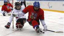 �e�tí sledge hokejisté na paralympiád� v So�i | na serveru Lidovky.cz | aktu�ln� zpr�vy