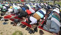 Modlící se muslimové na Letné. | na serveru Lidovky.cz | aktu�ln� zpr�vy