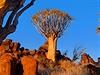 Divoká krajina v Namibii dostane p�i západu slunce dal�í rozm�r. | na serveru Lidovky.cz | aktu�ln� zpr�vy