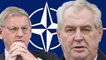 �védský ministr zahrani�í Carl Bildt a �eský prezident Milo� Zeman se na... | na serveru Lidovky.cz | aktu�ln� zpr�vy