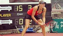 Tenistka Nicole Vaidi�ov�.