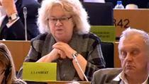 Miroslav Ransdorf (KS�M) usnul p�i grilov�n� V�ry Jourov� v europarlamentu