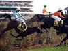 Koním tradičně nejvíce zavařil Taxisův příkop.
