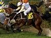 Žokejka Martina Růžičková s koněm Rubínem (na snímku vpředu uprostřed) překonávají Taxisův příkop.
