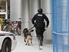 Policejní šéf Charles Bordeleau na tiskové konferenci uvedl, že bezpečnostní operace u parlamentu dosud neskončila. O osobě mrtvého střelce, jeho komplicích ani motivech útoku nechtěl spekulovat. Policisté stáleč prohledávájí blízké okolí.