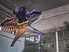 Pohled do výstavy Aj Wej-weje v bývalém v�zení Alcatraz. | na serveru Lidovky.cz | aktu�ln� zpr�vy