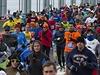 44. ro�n�ku maratonu v New Yorku se z��astnilo kolem 50 tis�c lid�.