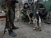 Chvíle oddechu. Ukrajinští dobrovolníci se psem u vesnice Peski poblíž Doněcka.