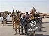 Šíitské milice oslavují úspěch v boji s Islámským státem (ilustrační...