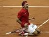 Roger Federer získal pro �výcary Davis Cup | na serveru Lidovky.cz | aktu�ln� zpr�vy