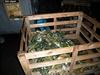 Nelegální sklad potravin v Bruntále.