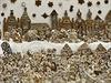 Betlém dnes sestavili z celkem 1806 perníků, které sami upekli. Z toho 1255...