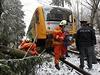 V Radňovicích kromě ledovky padaly na vlaky stromy.