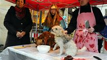 Happening �Prodej v�no�n�ch ps� uspo��dali aktivist� z Kolektivu pro zv��ata v...