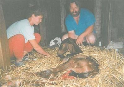 Adamusová - narodila se Vilma