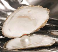 perly archivu perla