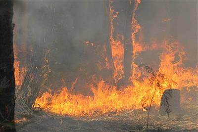 Švehla - Austrálie - požáry 3
