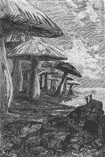 Cesta do středu Země Jules Verne 6 Voyage au centre terre