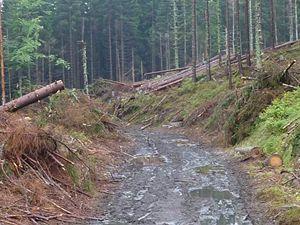 přístupová cesta k jezeru Laka