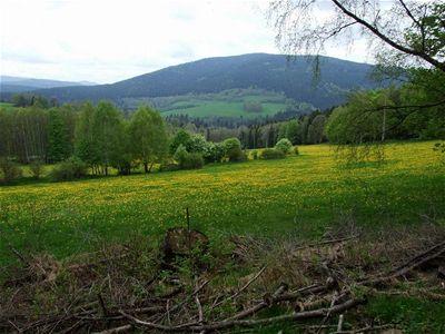 Zat�m zdrav� lesy v �dol� K�emeln�