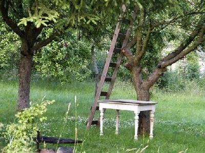 V létě pod jabloní, foto Abyt