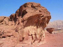 Mír pouštních hub 5