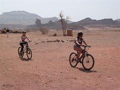 Mír pouštních hub 7
