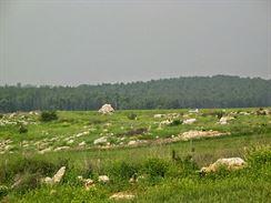 M�r v Izraeli 1
