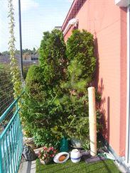 Na letní terase